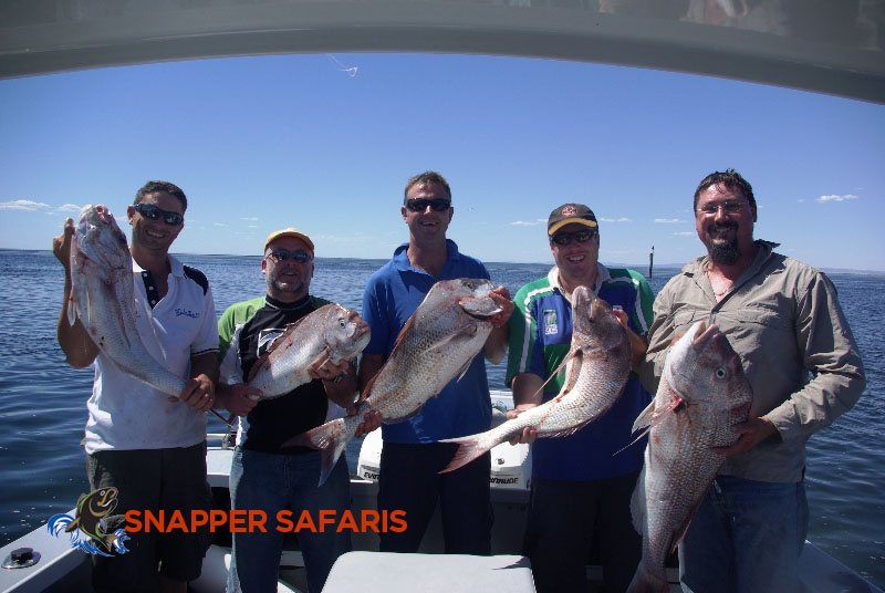 At least 1 decent Snapper each to take ashore.