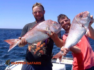 Snapper Safaris operate out of Pt. Broughton