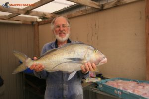 Morwong fish makes for good eating