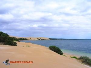 Majestic & untouched sand dunes